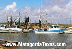 Shrimp Boats at rest...